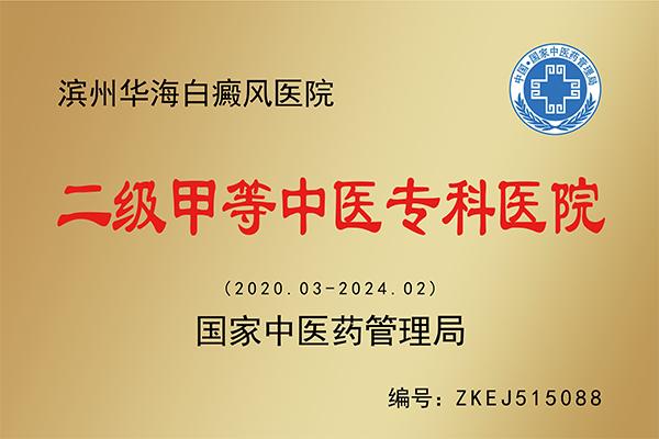 华海白癜风二级甲等中医专科医院资质铜牌.png
